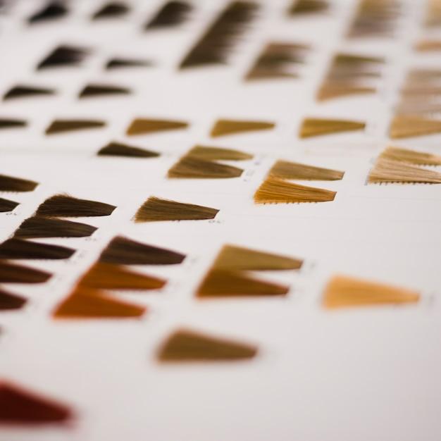 Catálogo de cores de cabelo Foto gratuita