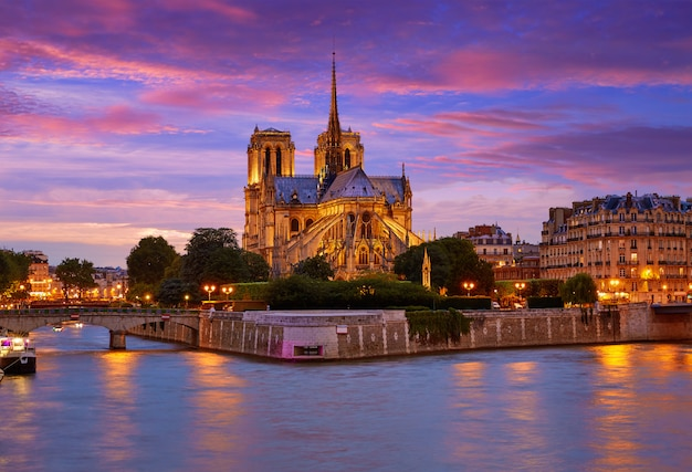 Catedral de notre dame pôr do sol de paris no seine Foto Premium