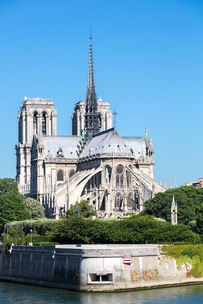 Catedral de notre dame Foto Premium