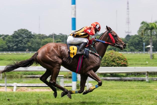 Cavalo de corrida e jockey saltando sobre um obstáculo Foto Premium