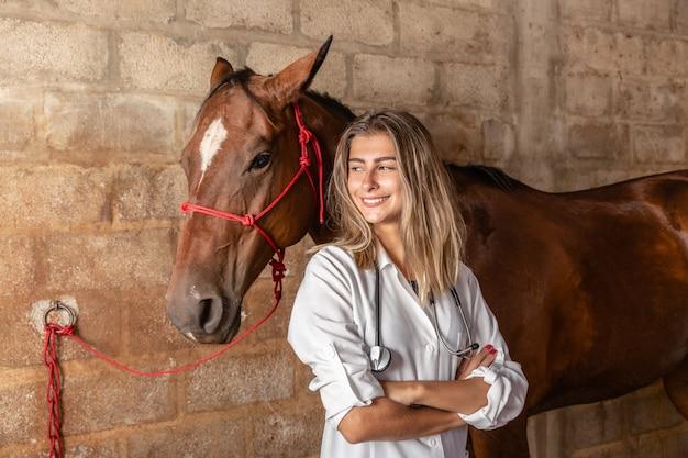 Cavalo de exame veterinário. Foto Premium