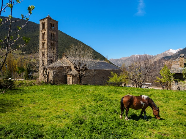 Cavalo pastando no pé de uma igreja Foto Premium