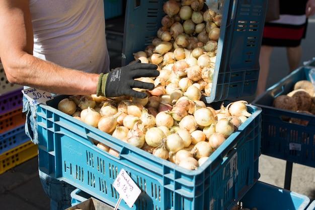 Cebola à venda no mercado dos fazendeiros Foto gratuita
