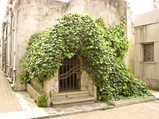 Cemitério scape, religião Foto gratuita