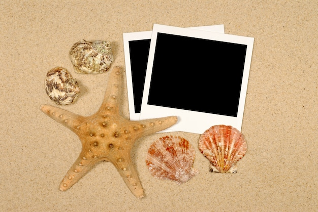 Cena do litoral com estrela do mar e polaroids Foto Premium