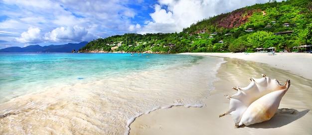 Cenário de praia tropical idílico Foto Premium