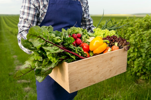 Cesta de exploração masculina de close-up com legumes Foto Premium