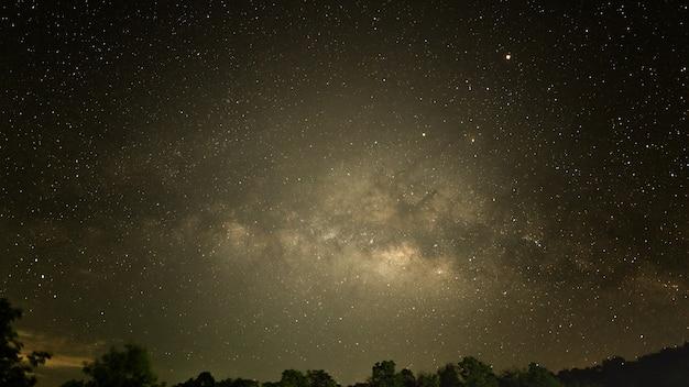 Céu à noite com muitos estrela no inverno sobre floresta Foto Premium