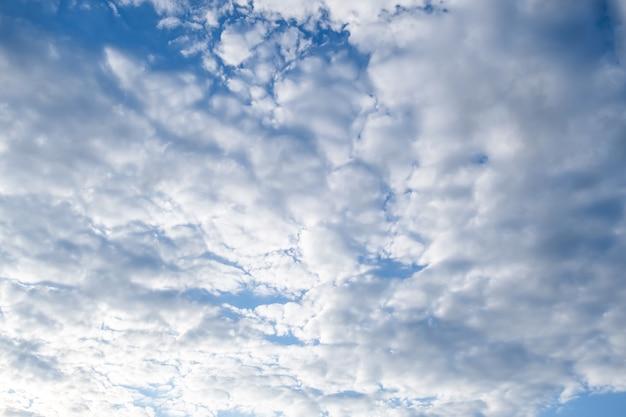 Céu azul com nuvens brancas fofas Foto gratuita