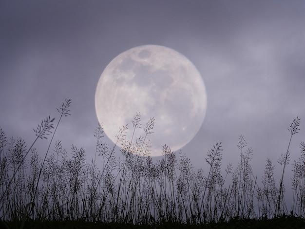 Céu noturno dramático com lua cheia e prado para o fundo de halloween. Foto Premium