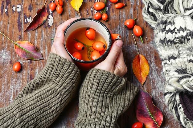 Chá com roseira brava Foto Premium