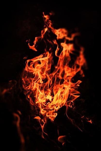 Chamas de fogueira à noite. fogo chamas em um fundo preto Foto Premium