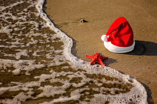 Chapéu de papai noel, natal tropical Foto Premium