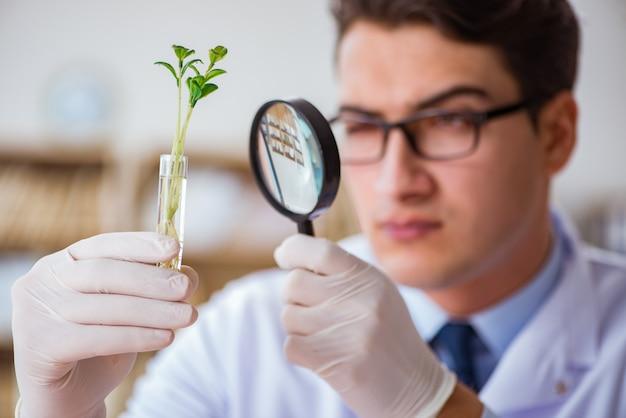 Cientista de biotecnologia trabalhando no laboratório Foto Premium