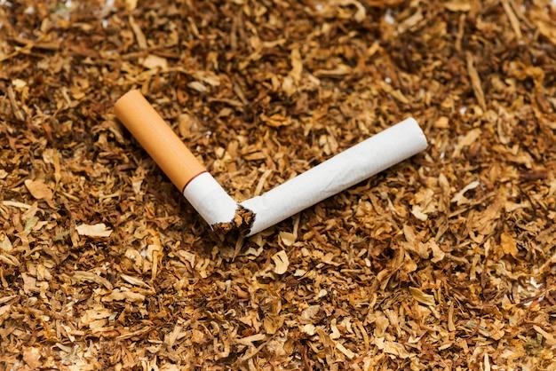Cigarro quebrado contra tabaco Foto gratuita