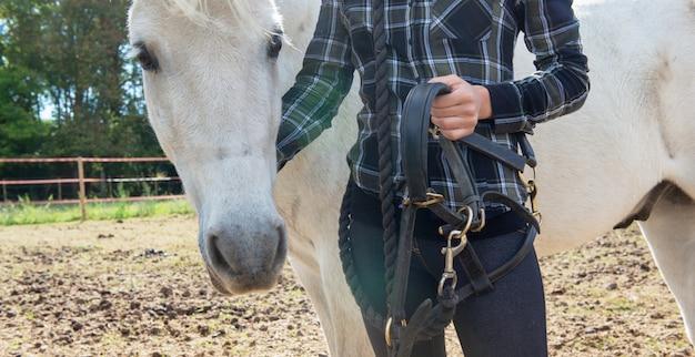 Cima, de, jovem, cavaleiro, mulher, com, cavalo branco Foto Premium