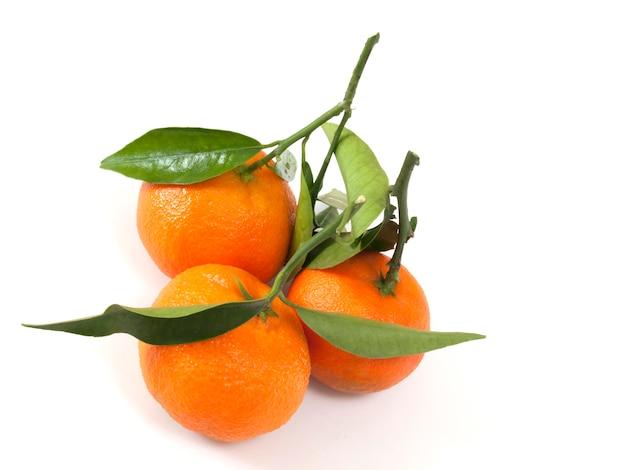 Clementina cítrica natural em branco Foto Premium