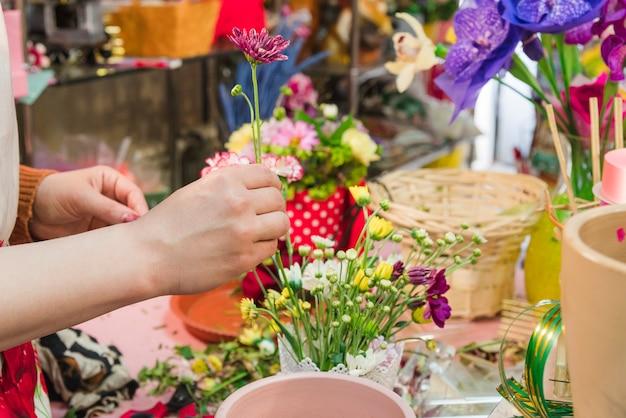 Close-up da mão humana, organizando a flor Foto gratuita