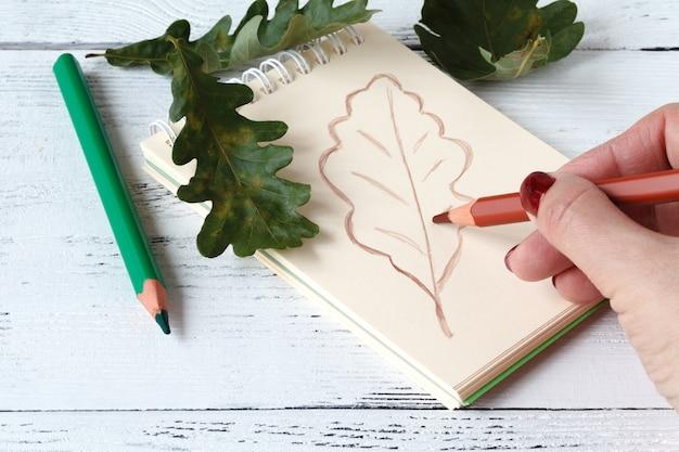 Close-up das mãos desenhando uma folha de outono coberta com folhas de outono Foto Premium