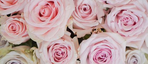 Close-up de delicadas flores rosas Foto gratuita