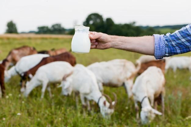 Close-up de leite de cabra Foto gratuita
