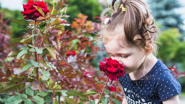 Close-up, de, menininha, cheirando, rosa vermelha, flor, parque Foto gratuita