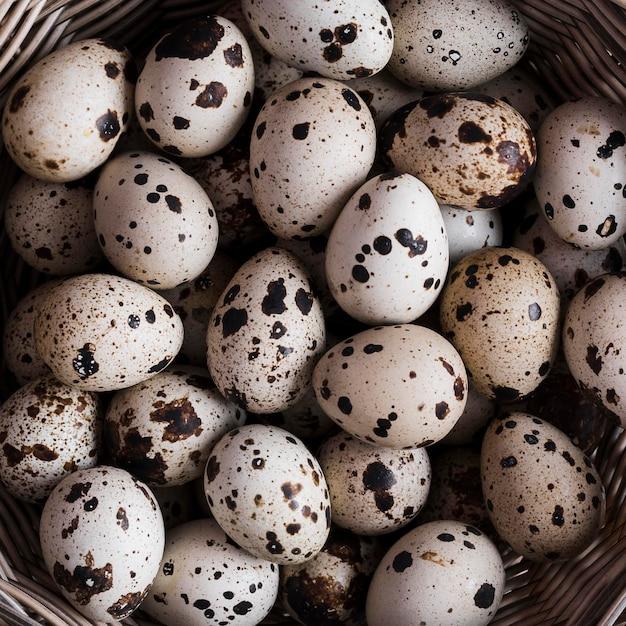 Close-up de ovos de codorna Foto gratuita
