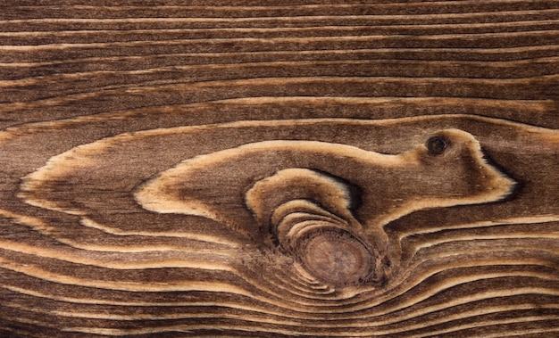 Close-up de textura de madeira com círculos e linhas Foto gratuita