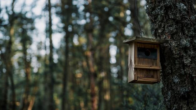 Close-up, de, um, madeira, pássaro, alimentador Foto gratuita