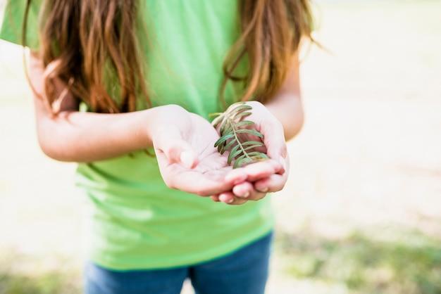 Close-up, de, um, menina, em, verde, t-shirt, segurando, ramo, em, mãos Foto gratuita