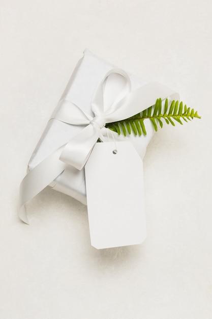 Close-up de uma caixa de presente; tag vazia e folha verde, isolado no fundo branco Foto gratuita