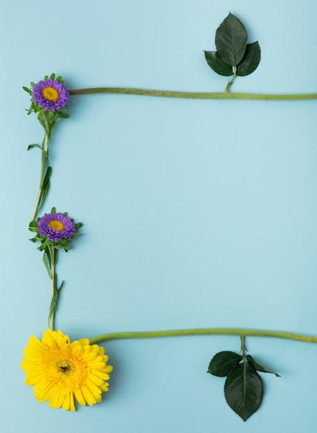 Close-up de vários tipos de flores e folhas, formando uma moldura natural Foto gratuita