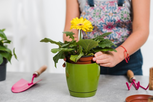 Close-up feminino plantando flores Foto gratuita