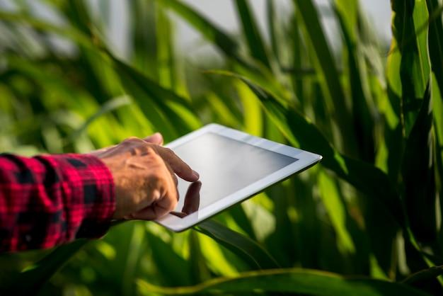 Close-up homem usando um tablet em um campo Foto gratuita