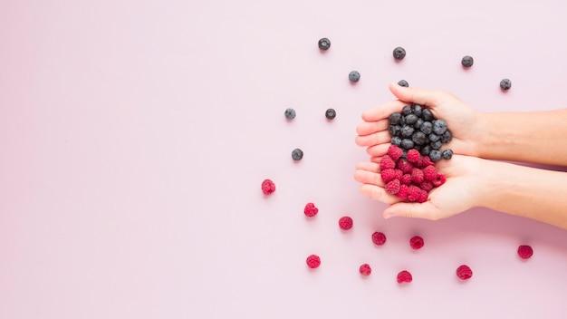 Close-up mãos, segurando, framboesas, e, mirtilos, ligado, fundo cor-de-rosa Foto gratuita