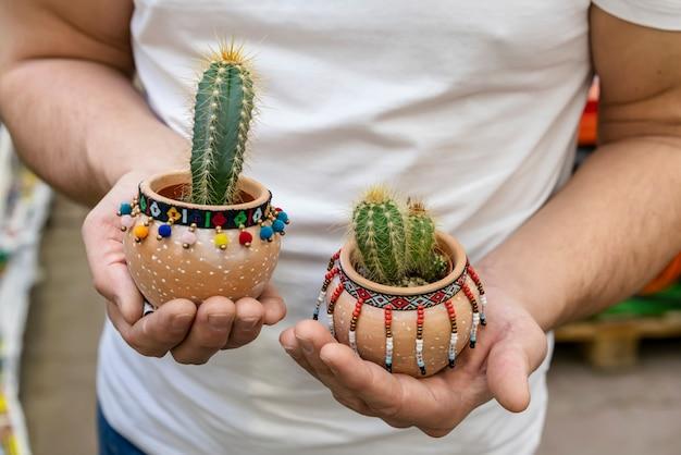 Close-up mãos segurando plantas da casa Foto gratuita