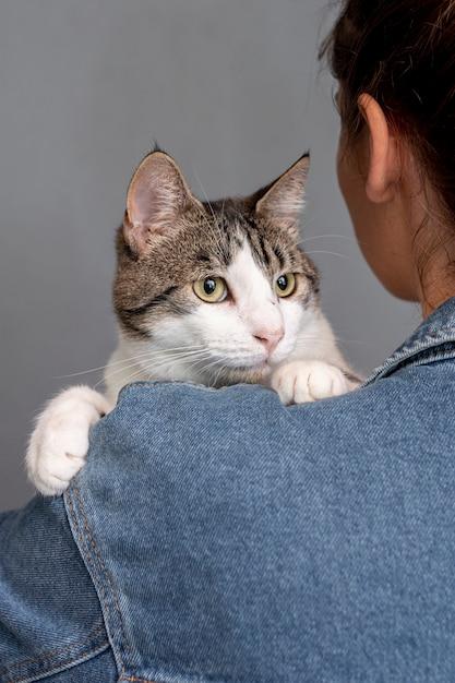 Close-up, mulher segura, gato Foto gratuita