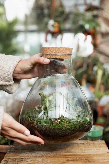 Close-up, mulher segura, jarro, com, plantas Foto gratuita
