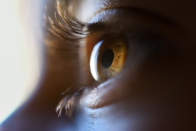 Close-up of beautiful little girl brown eye Foto gratuita