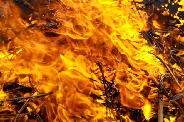 Close-up, queimadura, desperdício, fogo, chama, e, fumaça Foto Premium