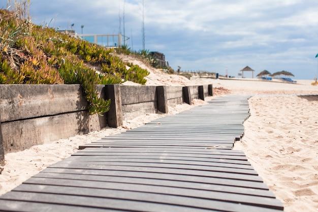 Close-up, vista, de, um, tábua madeira, caminhada, praia Foto Premium