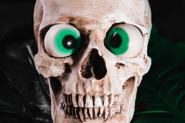 Close-up vista do crânio com olhos extravagantes Foto gratuita