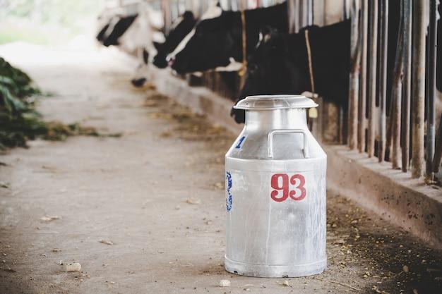 Close-up, vista, ligado, balde, ordenhar, vacas, em, a, animal, celeiro Foto gratuita