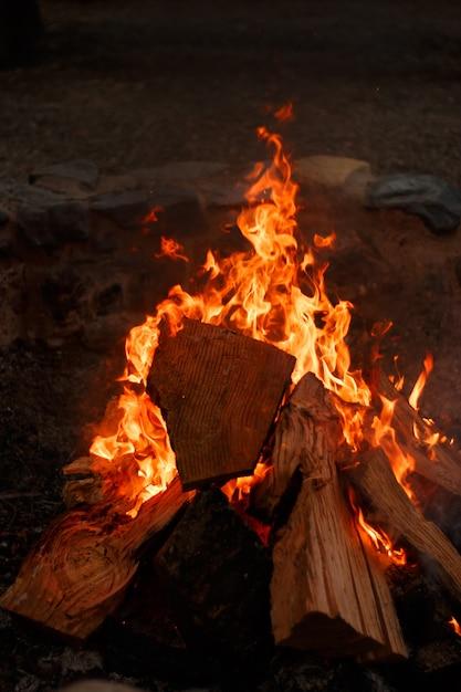 Close vertical de uma fogueira com uma linda chama laranja Foto gratuita