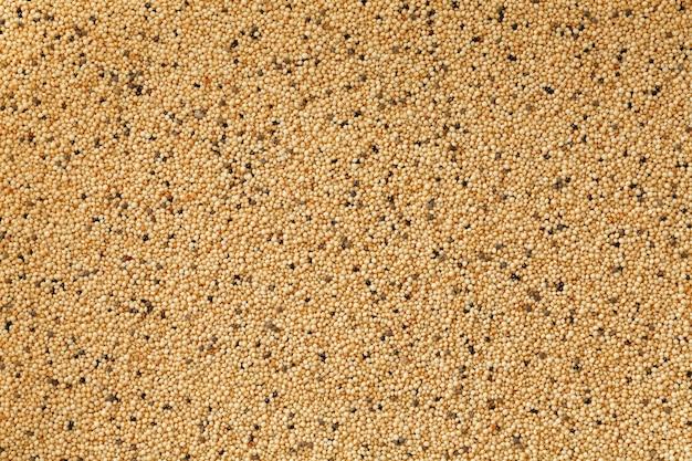 Closeup de arroz marrom jasmim Foto Premium