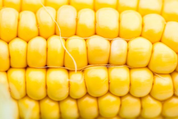 Closeup de espiga de milho amarelo, tiro macro Foto Premium