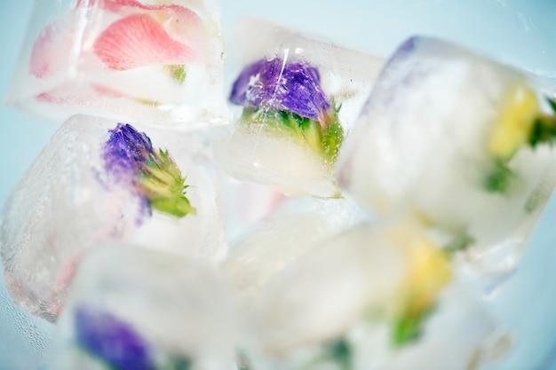 Closeup, de, flores, cubo gelo Foto gratuita