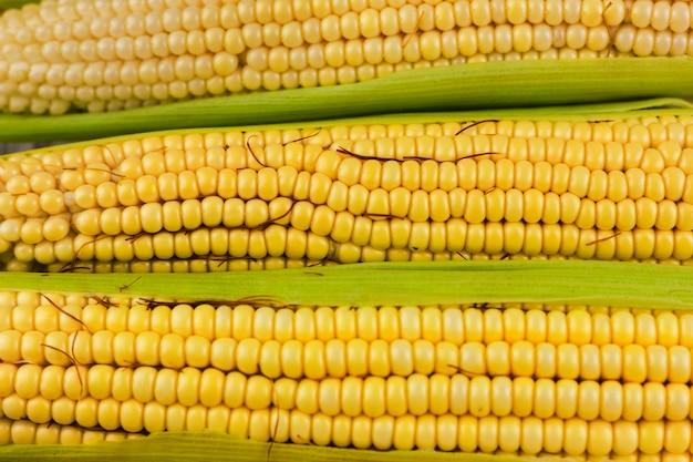 Closeup de milho amarelo fresco Foto gratuita