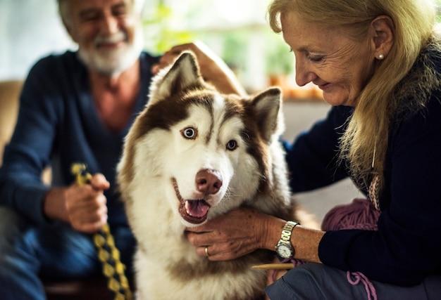 Closeup, de, mulher sênior, acariciar, husky siberiano Foto Premium