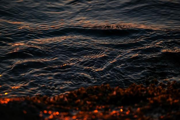 Closeup de ondas do mar perto da costa com plantas amarelas Foto gratuita